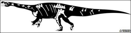 aardonyx-skeleton.jpg